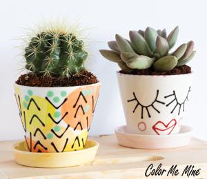 Pasadena Cute Planters